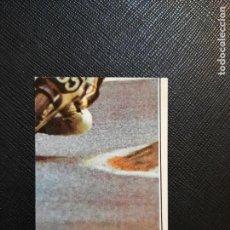 Coleccionismo deportivo: MOTO SPORT PANINI CROMO MOTOCICLISMO - SIN PEGAR - 113 B. Lote 295535708