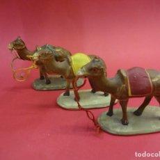 Figuras de Belén: LOTE DE 3 CAMELLOS PARA LOS REYES MAGOS EN TERRACOTA PINTADA. BELEN-PESEBRE. ALTURA: 7,5 CTMS.. Lote 97784530