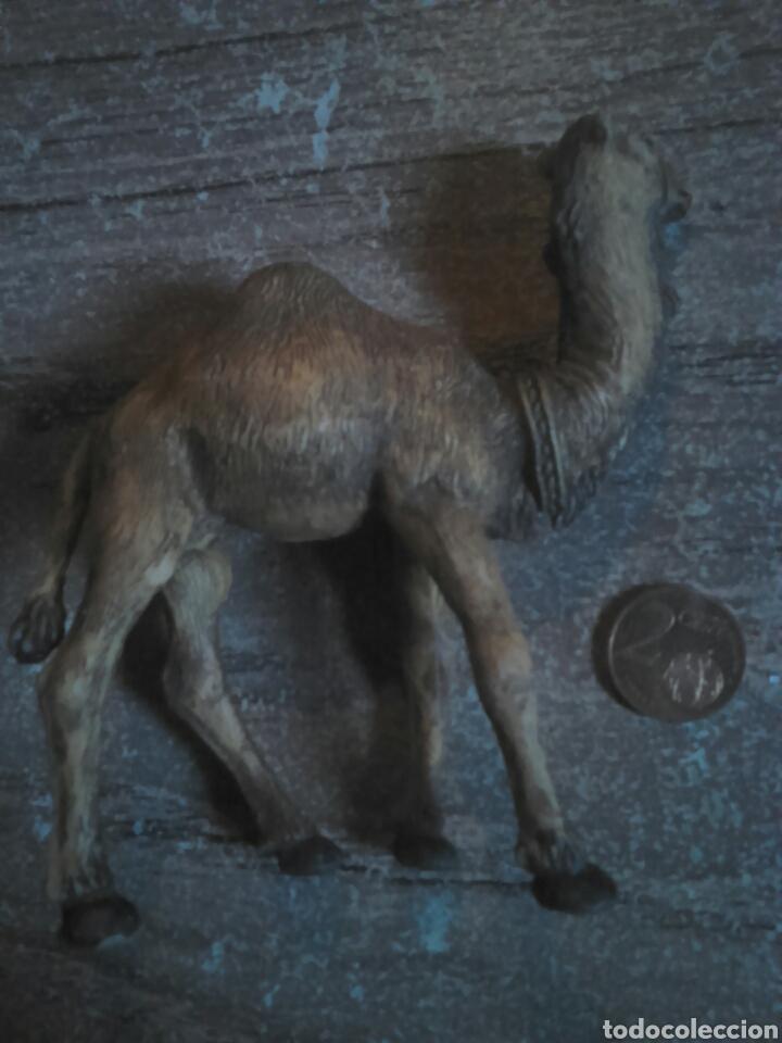 Figuras de Belén: Preciosa figura de un belén, camello,firmado oliver,ideal coleccionistas - Foto 2 - 108318134
