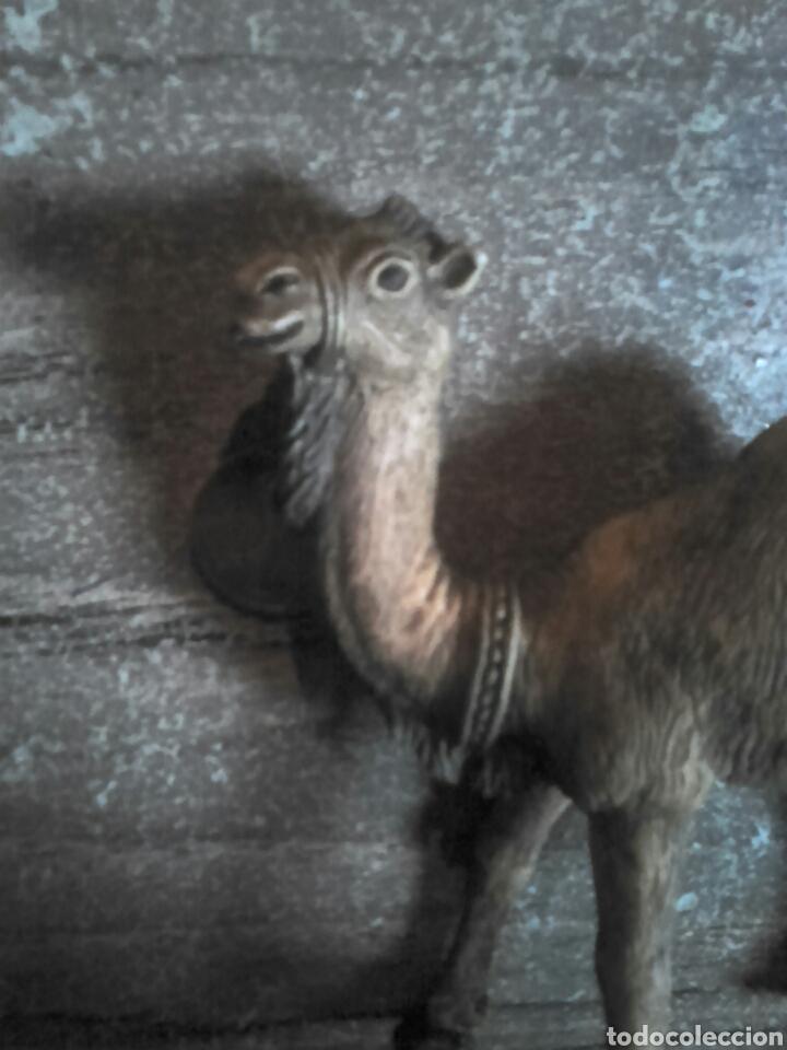 Figuras de Belén: Preciosa figura de un belén, camello,firmado oliver,ideal coleccionistas - Foto 3 - 108318134