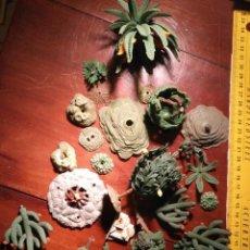 Figuras de Belén: FIGURA DE PORTAL DE BELEN PLASTICO DURO AÑOS 60/70 - GRAN LOTE BASES CAPTUS HIERBAS PLANTAS ARBOLES . Lote 113857507