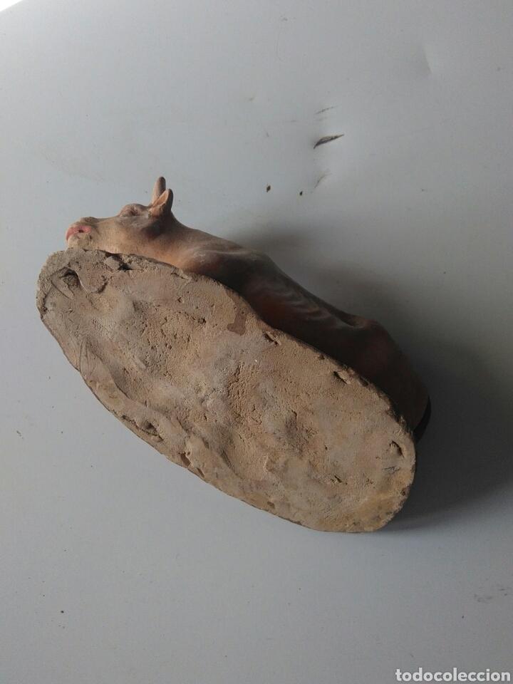 Figuras de Belén: Buey terracota policromado 15cm - Foto 4 - 149323941