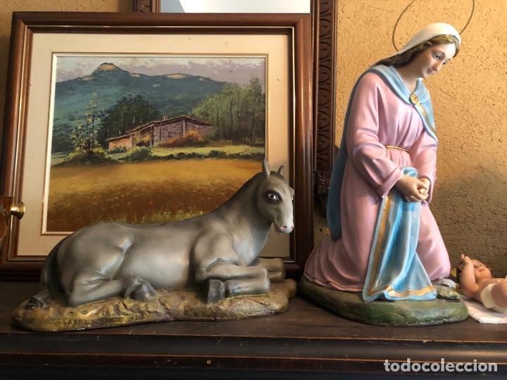 Figuras de Belén: FIGURA BELEN, MISTERIO DE ESTUCO SERIE 60/70 OLOT. MUY GRANDE. - Foto 4 - 274582438