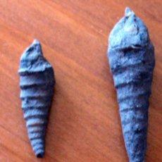 Coleccionismo de fósiles: 2 FOSILES DE GASTEROPODOS. Lote 26803450