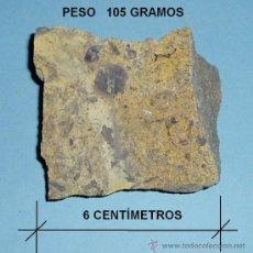 Coleccionismo de fósiles: FÓSIL A CLASIFICAR. LONGITUD MAYOR 6 CM. PESO 105 GRAMOS. Lote 22089539