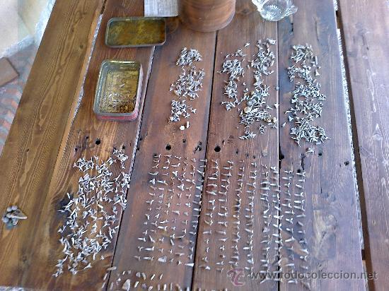 Coleccionismo de fósiles: fosiles de tiburon - Foto 5 - 32189292