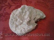 Coleccionismo de fósiles: EXTRAORDINARIO FOSIL DE AMMONITES LITOCERAS - Foto 2 - 41738840