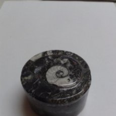 Coleccionismo de fósiles: PRECIOSA CAJITA/ JOYERO HECHO CON UNA PIEZA FOSIL. Lote 49515664