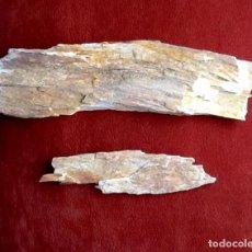 Coleccionismo de fósiles: MADERA PETRIFICADA, 2 TROZOS..ENVIO CERTIFICADO INCLUIDO.. Lote 62507952