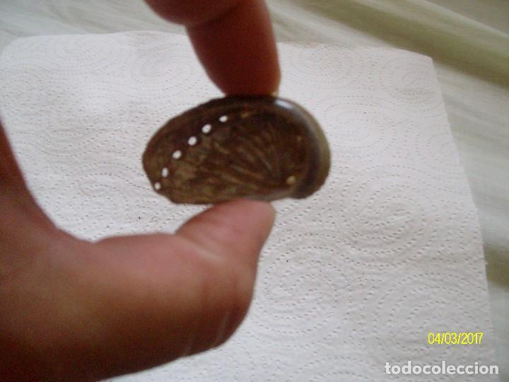 Coleccionismo de fósiles: GRUPO DE FOSILES Y CONCHAS MARINAS - Foto 23 - 78311625