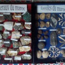 Coleccionismo de fósiles: CAJA DE MADERA CON CRISTAL MINERALES Y FÓSILES DE MARRUECOS FORMANDO LIBRO 24 MINERALES 48 FÓSILES. Lote 81689816