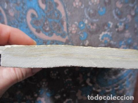 Coleccionismo de fósiles: PLACA DE PEZES - FOSIL - Foto 4 - 107435639