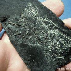 Coleccionismo de fósiles: CRINOIDEOS-SCYPOCRINITES ELEGANS-ORDOVÍCICO-BEGAS-BARCELONA 1982 H-66. Lote 124445219