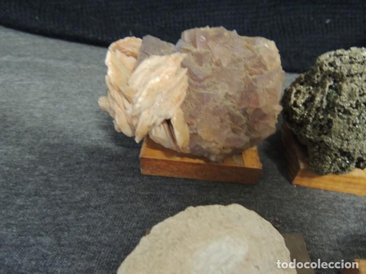 Coleccionismo de fósiles: lote 6 pza minerales y fosiles - Foto 5 - 136291302