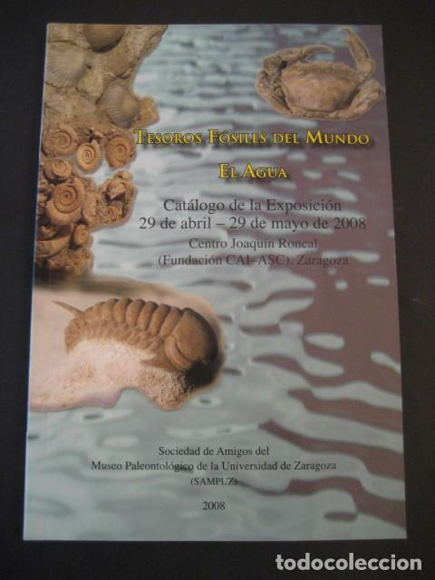 TESOROS FOSILES DEL MUNDO. PALEONTOLOGIA, AMMONITES, TRILOBITES, DINOSAURIOS. (Coleccionismo - Fósiles)