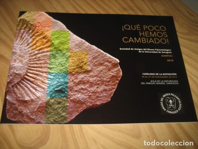 QUE POCO HEMOS CAMBIADO. FOSILES, PALEONTOLOGIA (Coleccionismo - Fósiles)