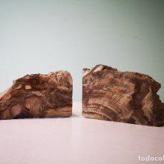 Coleccionismo de fósiles: LOTE DE DOS XILÓPALOS, MADERA FÓSIL (TRIÁSICO ARGENTINO). 200-250 MILLONES DE AÑOS.. Lote 147317274