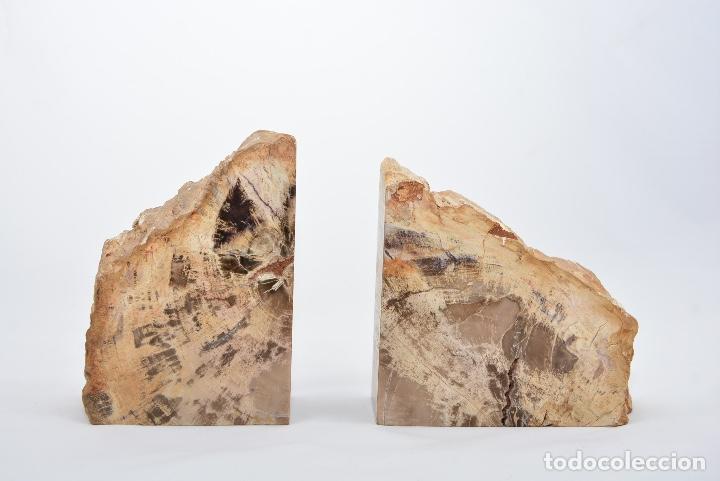 LOTE DE DOS XILÓPALOS, MADERA FÓSIL 200-250 MILLONES DE AÑOS. (Coleccionismo - Fósiles)