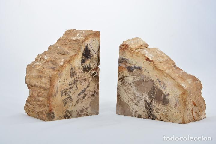 Coleccionismo de fósiles: Lote de dos xilópalos, Madera fósil 200-250 millones de años. - Foto 2 - 152054678