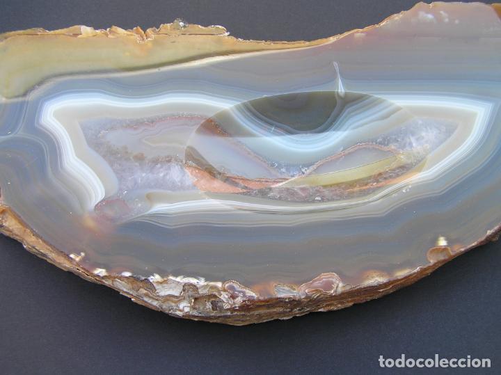Coleccionismo de fósiles: ÁGATA . REBANADA Y PULIDA.BRASIL. - Foto 6 - 161932390