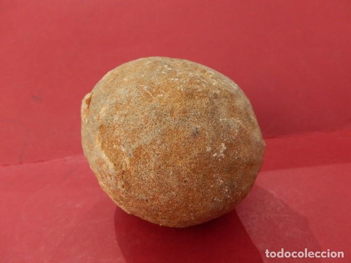 Coleccionismo de fósiles: Huevo de dinosaurio fosilizado, jurásico / cretácico. - Foto 2 - 169247616