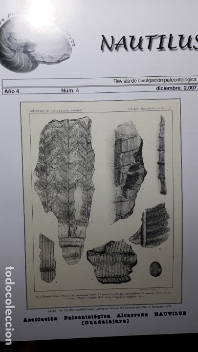 REVISTA PALEONTOLOGIA NAUTILUS 4. UNICA. DIFICIL DE CONSEGUIR. (Coleccionismo - Fósiles)