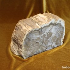 Coleccionismo de fósiles: PAREJA DE XILÓPALOS, MADERA FÓSIL (TRIÁSICO ARGENTINO). 200-250 MILLONES DE AÑOS. . Lote 179242331