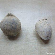 Coleccionismo de fósiles: DOS CONCHAS MARINAS FÓSILES VER DESCRIPCIÓN . Lote 181584216