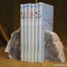 Coleccionismo de fósiles: PAREJA DE XILÓPALOS, MADERA FÓSIL (TRIÁSICO ARGENTINO). 200-250 MILLONES DE AÑOS.. Lote 181995780