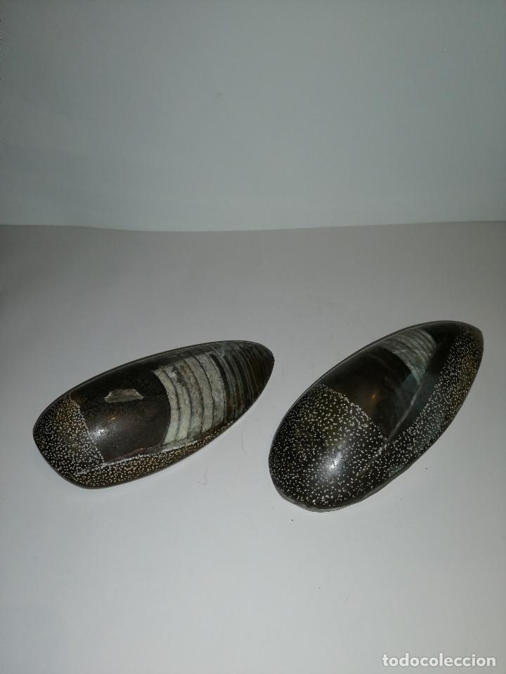 Coleccionismo de fósiles: Dos fósiles pulidos orthoceras - Foto 7 - 190543253