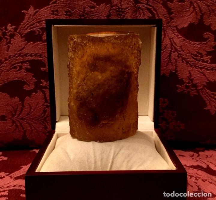 Coleccionismo de fósiles: GRAN BLOQUE DE RESINA ÁMBAR CON FÓSIL DE ESCORPIÓN EN INTERIOR - 219 GRAMOS. - Foto 5 - 197448872