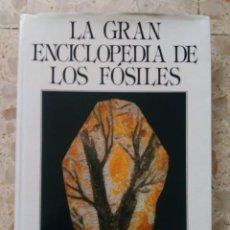 Coleccionismo de fósiles: LA GRAN ENCICLOPEDIA DE LOS FÓSLES - AA. VV. - SUSAETA, 1990. Lote 204262161