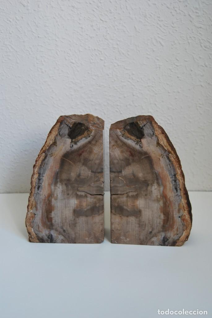 Coleccionismo de fósiles: MADERA FÓSIL - XILÓPALO - TRIÁSICO - DOS SECCIONES DEL MISMO TRONCO - ÁRBOL - Foto 2 - 211757773