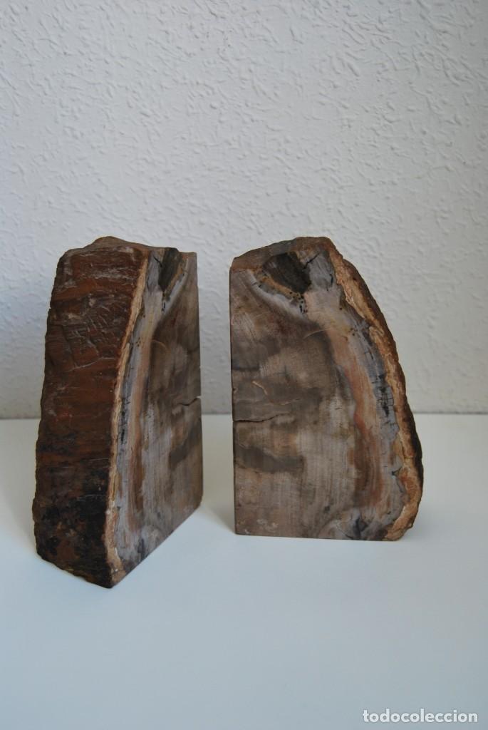 Coleccionismo de fósiles: MADERA FÓSIL - XILÓPALO - TRIÁSICO - DOS SECCIONES DEL MISMO TRONCO - ÁRBOL - Foto 3 - 211757773