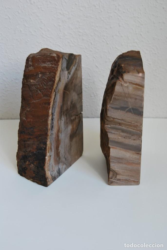 Coleccionismo de fósiles: MADERA FÓSIL - XILÓPALO - TRIÁSICO - DOS SECCIONES DEL MISMO TRONCO - ÁRBOL - Foto 4 - 211757773