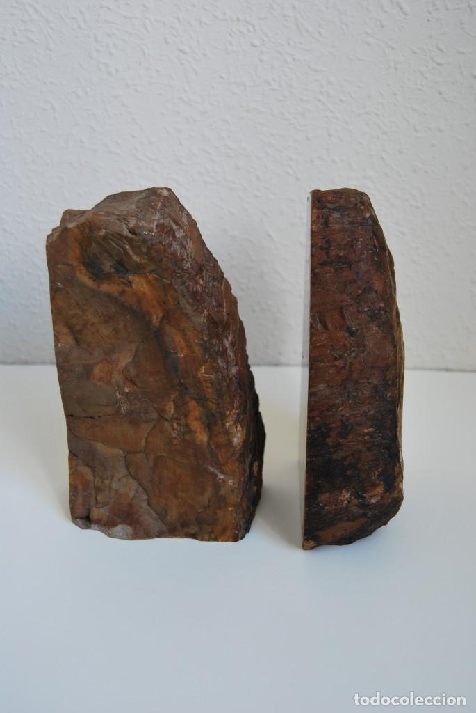 Coleccionismo de fósiles: MADERA FÓSIL - XILÓPALO - TRIÁSICO - DOS SECCIONES DEL MISMO TRONCO - ÁRBOL - Foto 5 - 211757773
