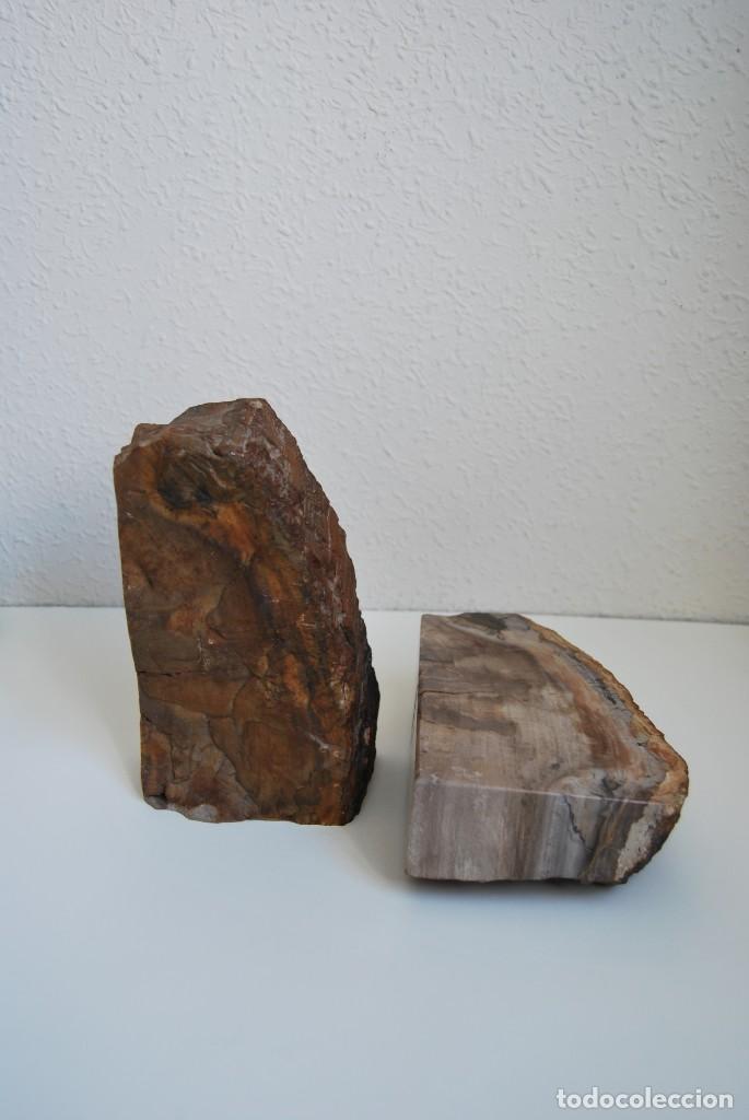 Coleccionismo de fósiles: MADERA FÓSIL - XILÓPALO - TRIÁSICO - DOS SECCIONES DEL MISMO TRONCO - ÁRBOL - Foto 6 - 211757773