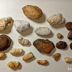 Coleccionismo de fósiles: LOTE DE COPROLITOS DE REPTILES Y PECES. Lote 215691668
