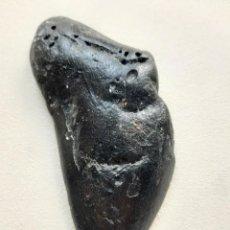 Coleccionismo de fósiles: 16. FÓSIL. ENORME DIENTE DE MEGALODÓN. 11,8 CENTÍMETROS.. Lote 223683551