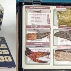 Coleccionismo de fósiles: COLECCION COMPLETA REPLICAS DIENTES Y GARRAS DE DINOSAURIO + FICHERO 146 PÁGS.. Lote 231218635
