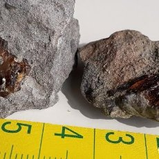 Coleccionismo de fósiles: DOS ÁMBAR NATURAL. CRETÁCICO. MINERALES. FÓSIL. GEMAS.. Lote 220375991