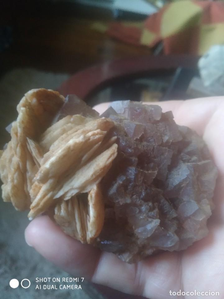 Coleccionismo de fósiles: Colección de minerales y fósiles 11 pzs - Foto 12 - 254792755