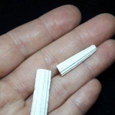 Coleccionismo de fósiles: FOSIL- ESCAFOPODO DENTALIUM SEXANGULUM - PLIOCENO. Lote 260481250