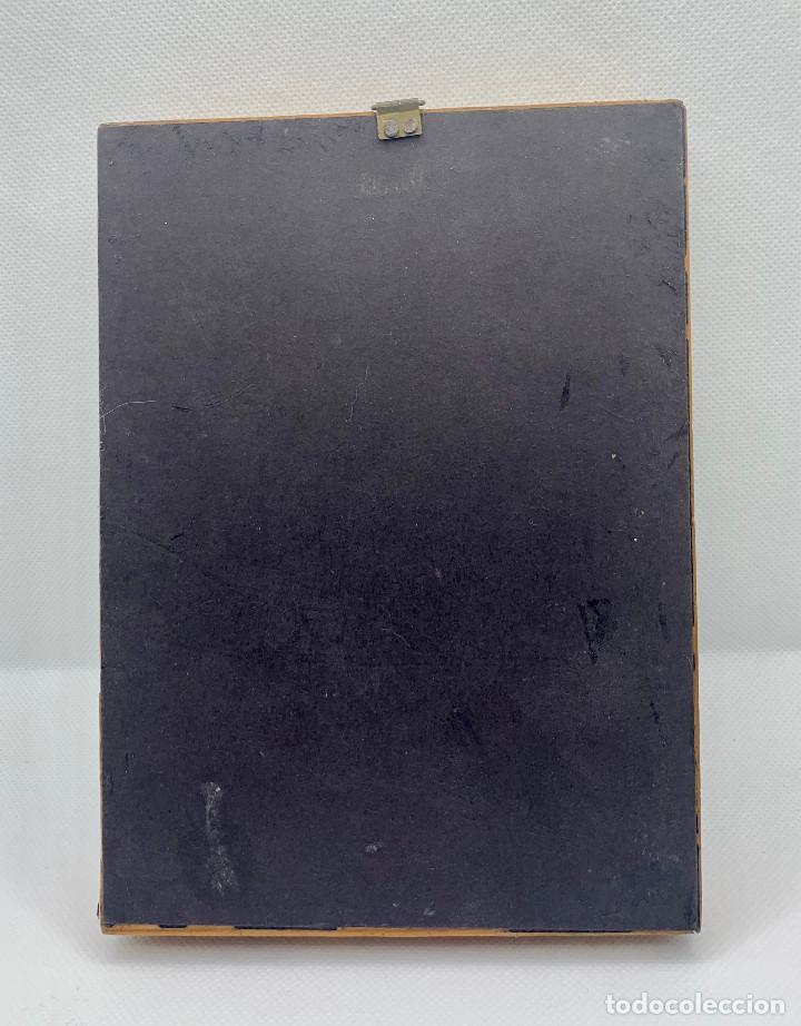 Coleccionismo de fósiles: 474.BONITO CUADRO EXPOSITOR DE CONCHAS DE VARIOS PAISES DEL MUNDO - Foto 2 - 262982980