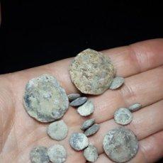 Coleccionismo de fósiles: FOSIL- FORAMINIFEROS- NUMMULITES STRIATUS- EOCENO. Lote 269419013