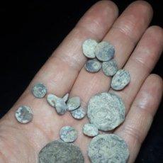 Coleccionismo de fósiles: FOSIL- FORAMINIFEROS- NUMMULITES STRIATUS- EOCENO. Lote 269437948
