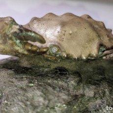 Coleccionismo de fósiles: CANGREJO - EN MATRIZ - XANTHOPSIS DUFOURI. Lote 271932168