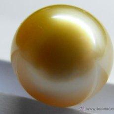 Coleccionismo de gemas: AUTÉNTICA PERLA AUSTRALIANA DE BELLO COLOR LIGERAMENTE DORADO SIN TRATAMIENTO. 12,4 MMS DE DIÁMETRO.. Lote 39469888