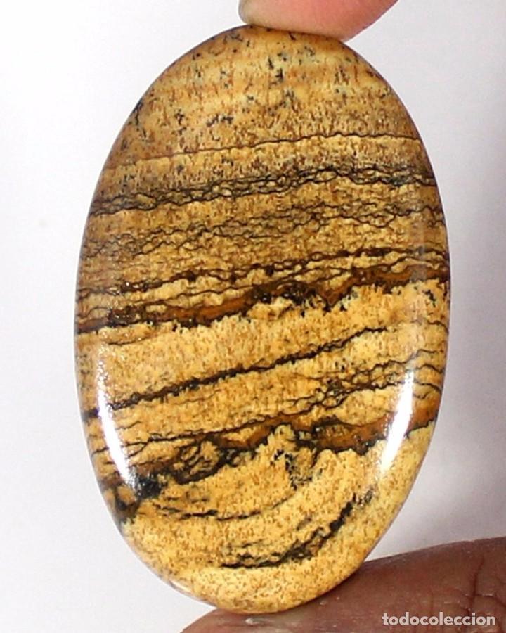 PIEDRA PRECIOSA JASPE NATURAL OVAL CABUJÓN GEMA (Coleccionismo - Mineralogía - Gemas)