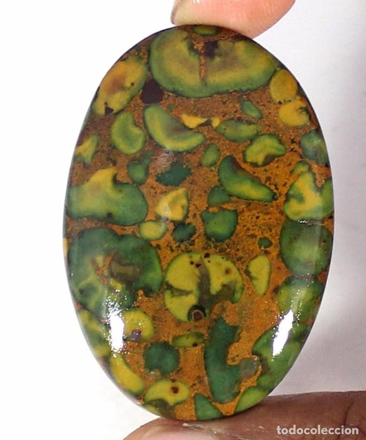 PIEDRA PRECIOSA - JASPE NATURAL CON PIEDRAS SUELTAS - CABUJÓN - GEMA (Coleccionismo - Mineralogía - Gemas)